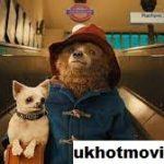 Ulasan Film Paddington 2014